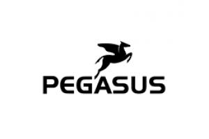 Велосипеды Pegasus