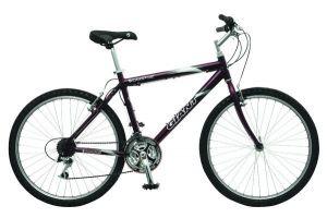 Велосипед Giant Campus (2007)