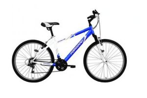 Велосипед Forward Katana 102 (2010)