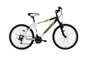 Велосипед Forward Storm 101 (2010)