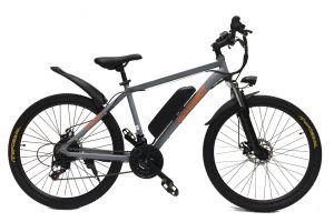 Велосипед Hoverbot CB-19 Genus (2018)