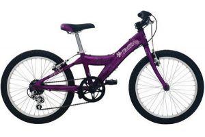 Велосипед Giant Taffy (2006)