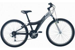 Велосипед Giant MTX 250 F/S (2006)