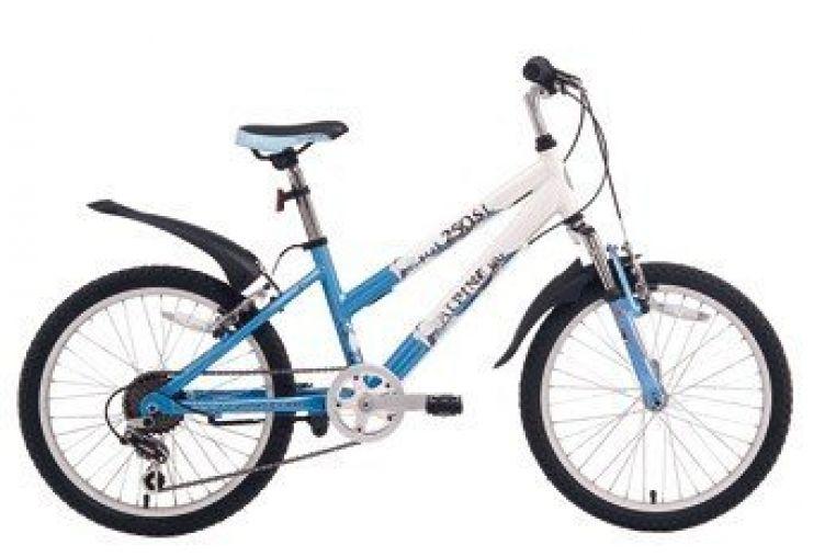 Велосипед Alpin Bike 250SL (2008)