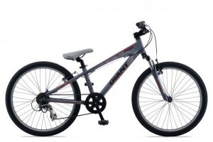 Велосипед Giant Brass Jr 24 (2012)