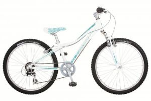 Велосипед Giant Areva 2 24 (2012)