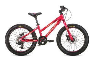 Велосипед Format 7423 20 (2020)