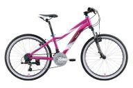 Подростковый велосипед   Welt Edelweiss 24 (2020)