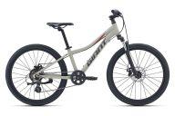 Подростковый велосипед  Giant XTC Jr 24 Disc (2021)